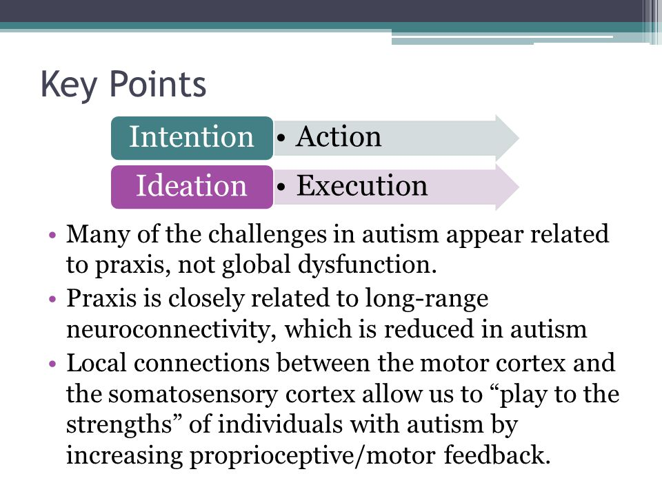 Key Points Many of the challenges in autism appear related to praxis, not global dysfunction.
