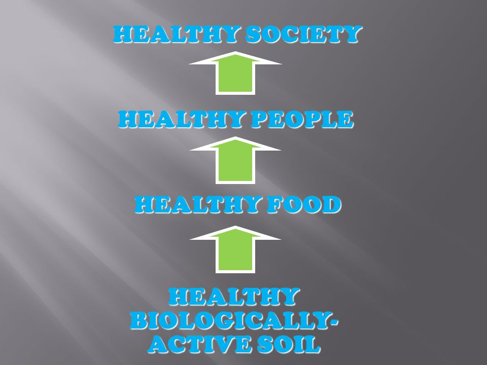 HEALTHY BIOLOGICALLY- ACTIVE SOIL HEALTHY FOOD HEALTHY PEOPLE HEALTHY SOCIETY