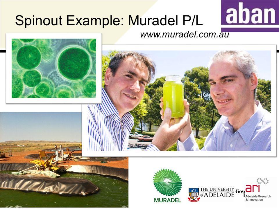 Spinout Example: Muradel P/L www.muradel.com.au