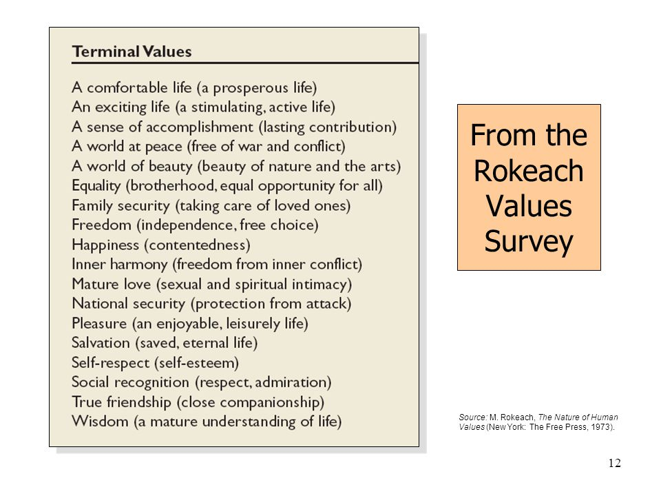12 Source: M. Rokeach, The Nature of Human Values (New York: The Free Press, 1973). From the Rokeach Values Survey