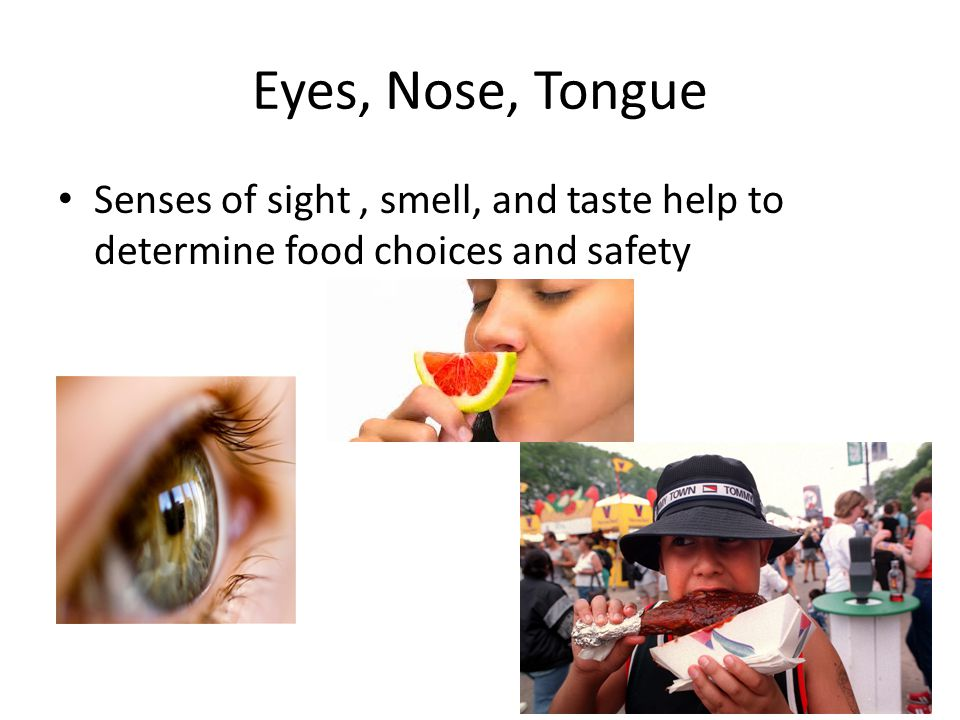 Eyes, Nose, Tongue Senses of sight, smell, and taste help to determine food choices and safety