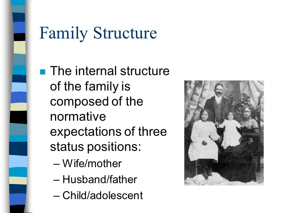 Family Structure n The internal structure of the family is composed of the normative expectations of three status positions: –Wife/mother –Husband/fat