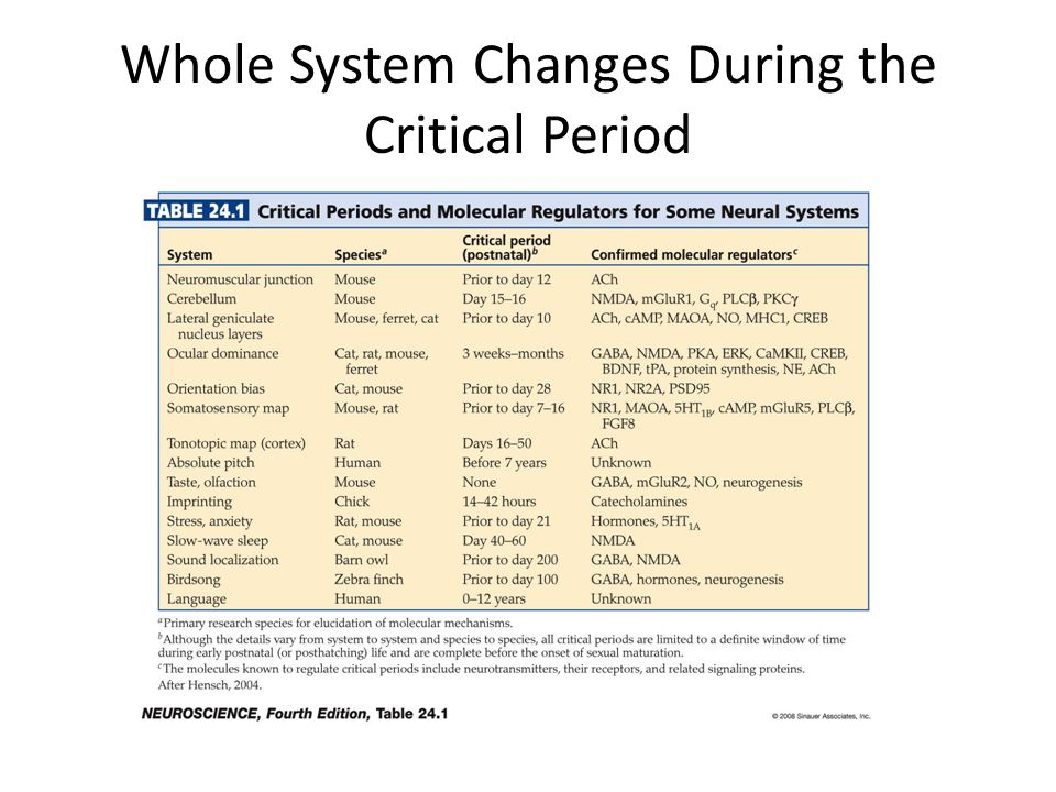 Whole System Changes During the Critical Period