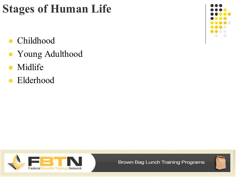 Stages of Human Life Childhood Young Adulthood Midlife Elderhood