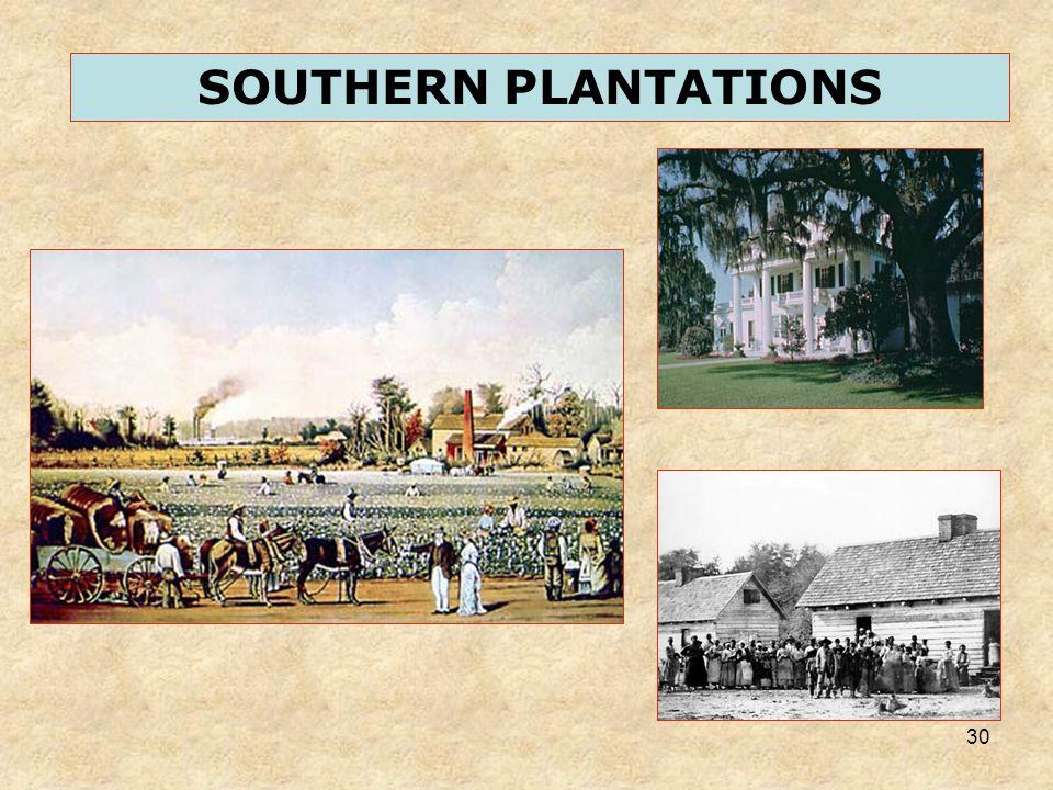 30 SOUTHERN PLANTATIONS
