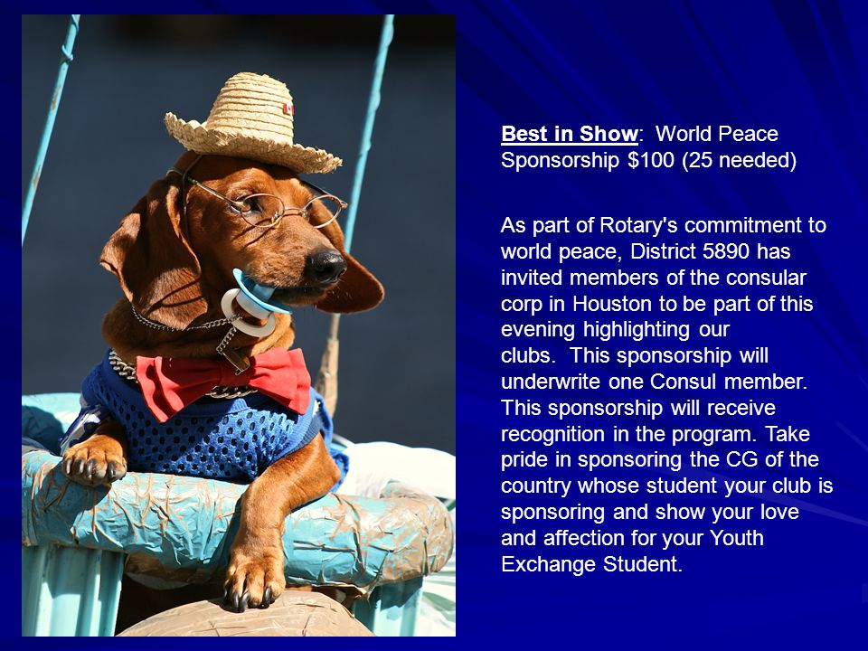 Best in Show: World Peace Sponsorship $100 (25 needed) As part of Rotary s commitment to world peace, District 5890 has invited members of the consular corp in Houston to be part of this evening highlighting our clubs.