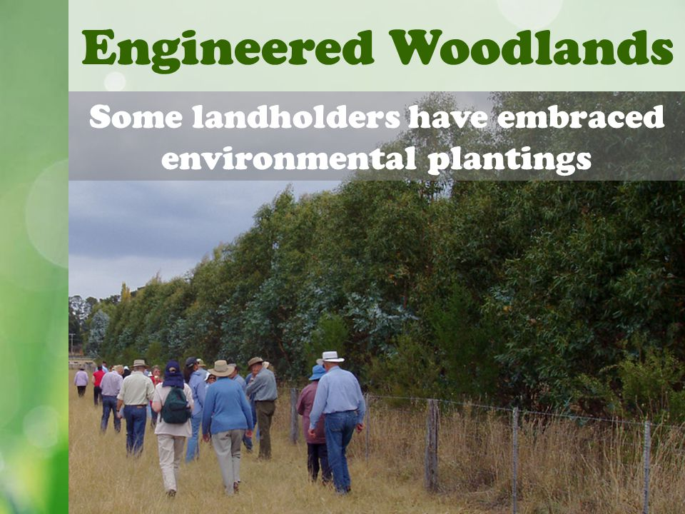 Engineered Woodlands Some landholders have embraced environmental plantings