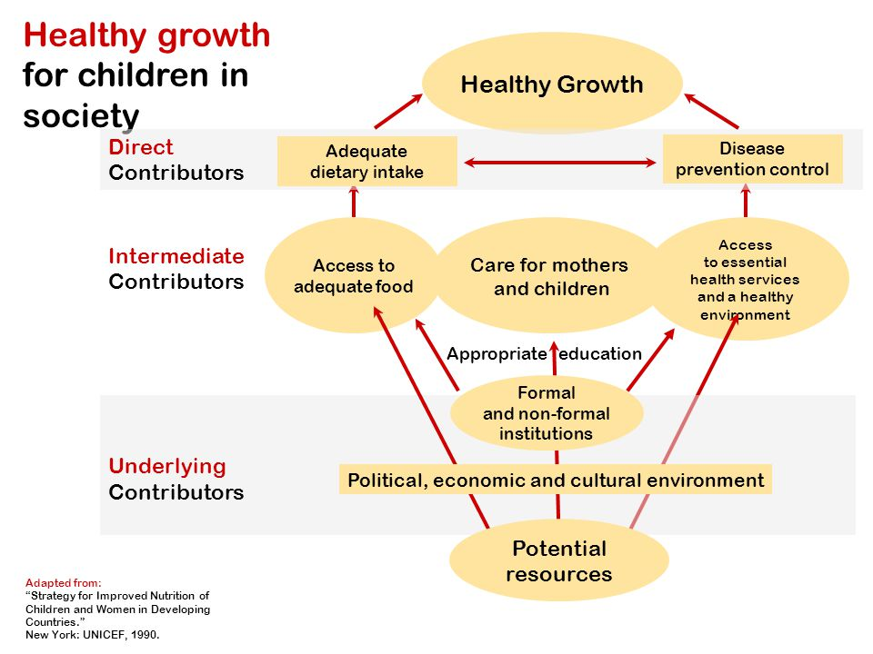 Healthy Growth Adapted from: Strategy for Improved Nutrition of Children and Women in Developing Countries. New York: UNICEF, 1990.