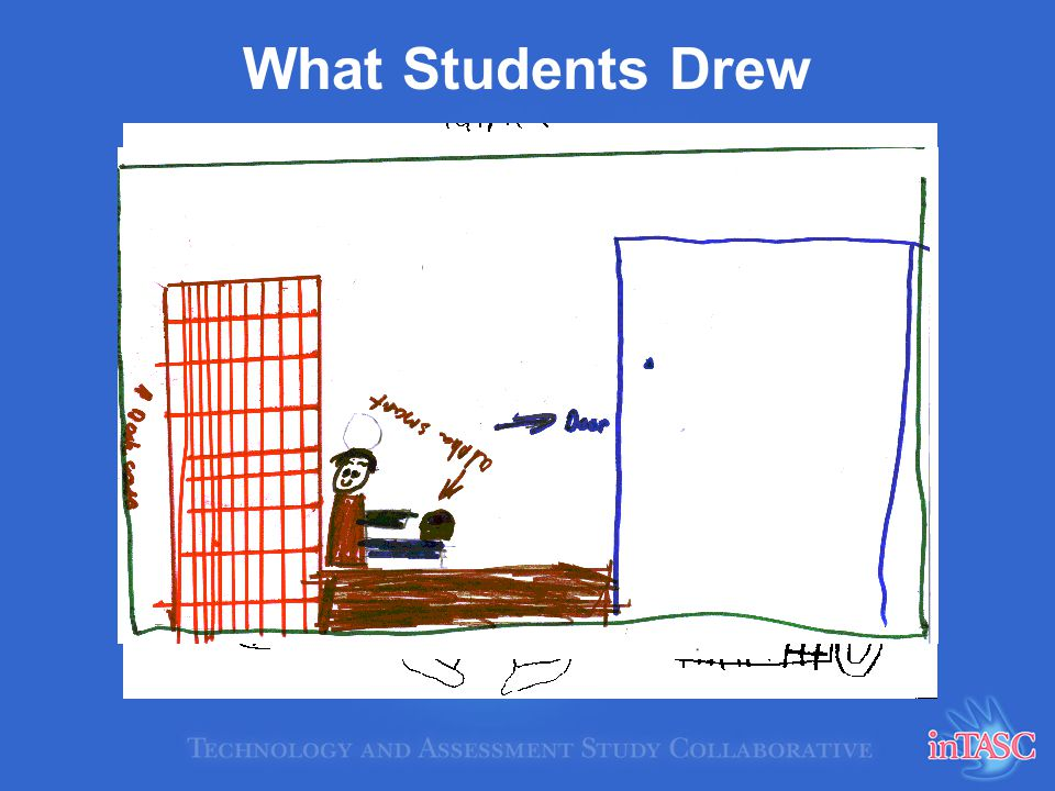 What Students Drew