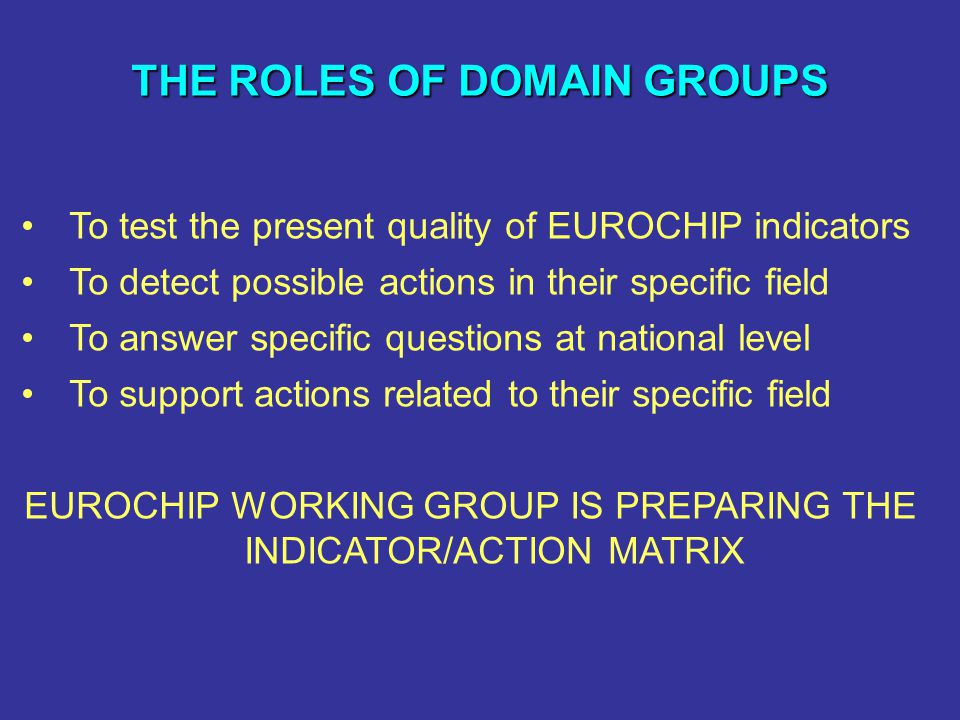 THE ROLES OF DOMAIN GROUPS THE ROLES OF DOMAIN GROUPS To test the present quality of EUROCHIP indicators To detect possible actions in their specific field To answer specific questions at national level To support actions related to their specific field EUROCHIP WORKING GROUP IS PREPARING THE INDICATOR/ACTION MATRIX