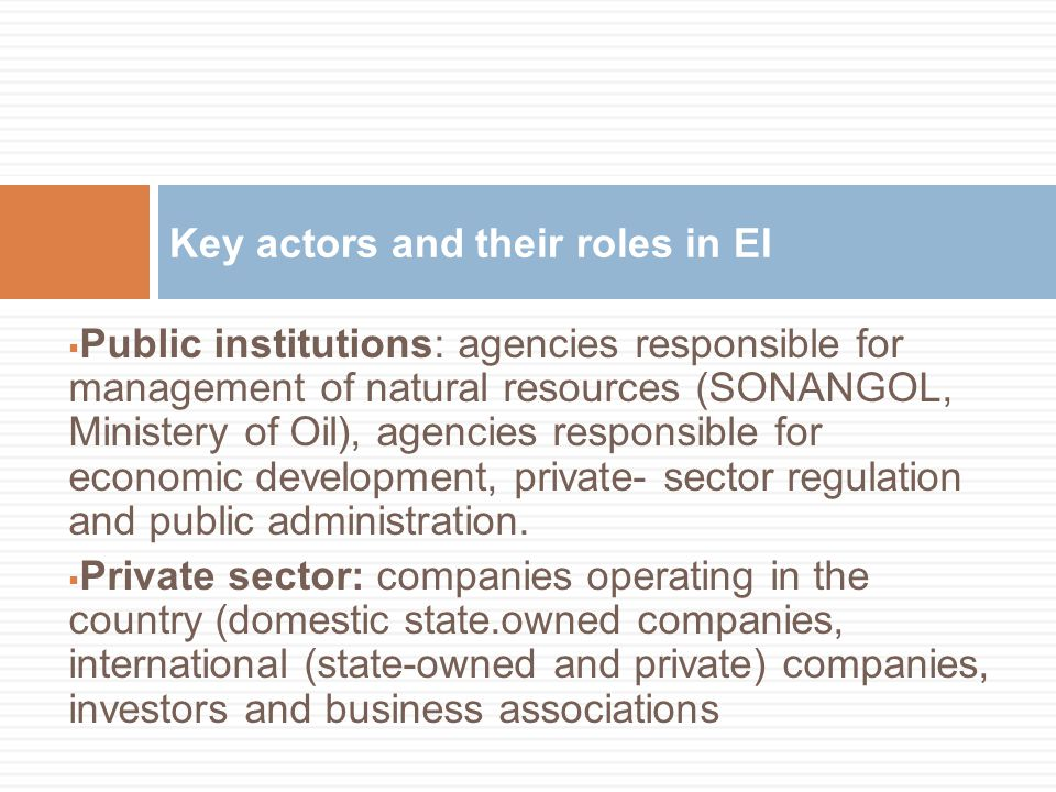  Public institutions: agencies responsible for management of natural resources (SONANGOL, Ministery of Oil), agencies responsible for economic develo