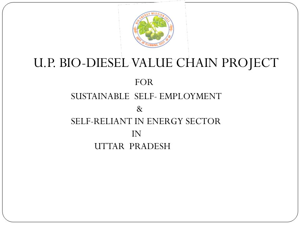 U.P. BIO-DIESEL VALUE CHAIN PROJECT FOR SUSTAINABLE SELF- EMPLOYMENT & SELF-RELIANT IN ENERGY SECTOR IN UTTAR PRADESH