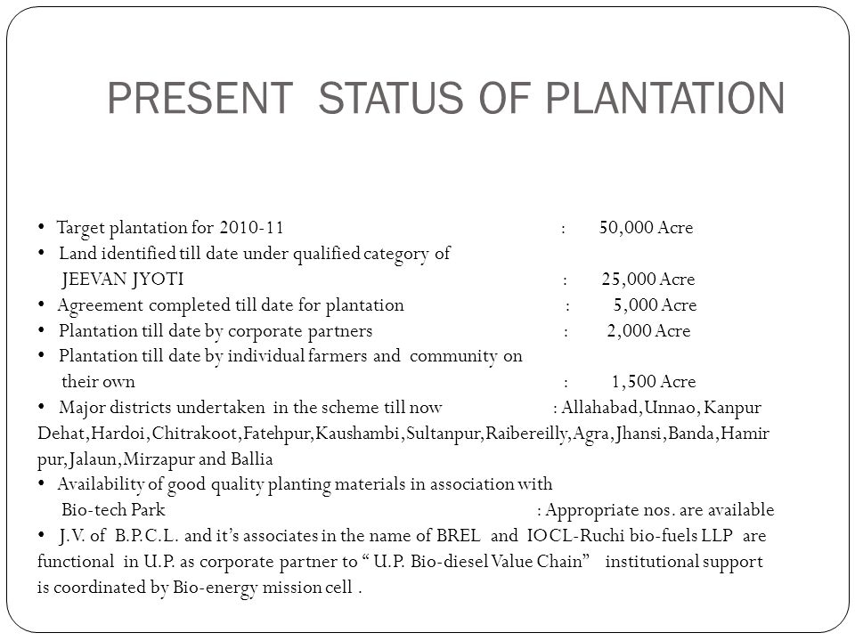 PRESENT STATUS OF PLANTATION Target plantation for 2010-11 : 50,000 Acre Land identified till date under qualified category of JEEVAN JYOTI : 25,000 A