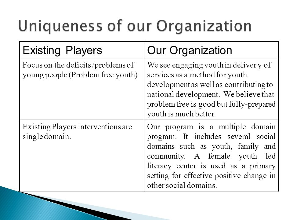 Existing PlayersOur Organization Focus on the deficits /problems of young people (Problem free youth).