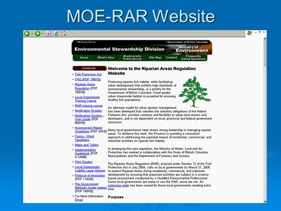 MOE-RAR Website
