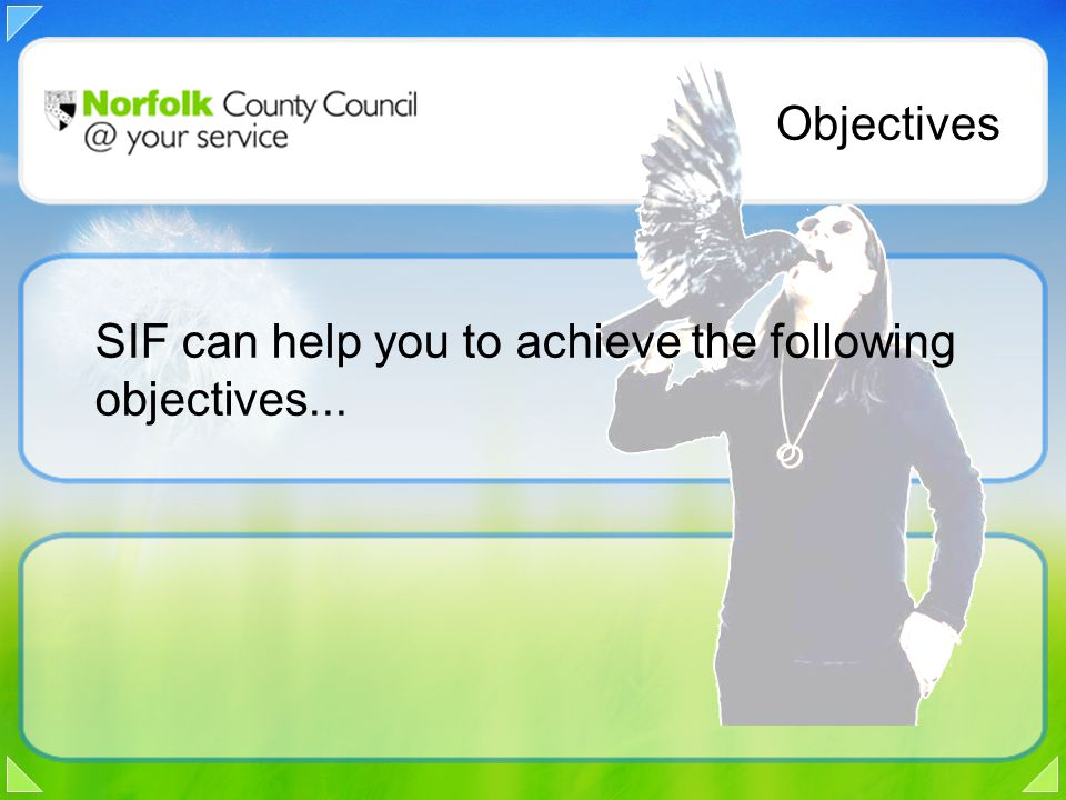 Objectives SIF can help you to achieve the following objectives...