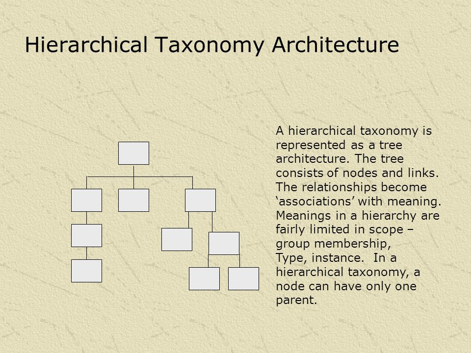Hierarchical Taxonomy Architecture A hierarchical taxonomy is represented as a tree architecture.