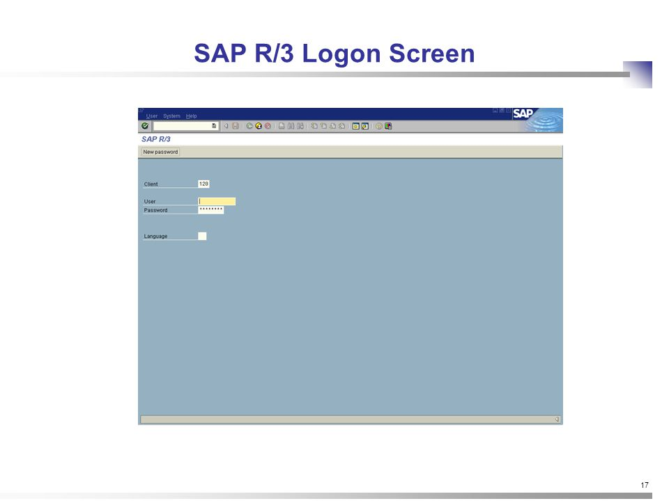 17 SAP R/3 Logon Screen