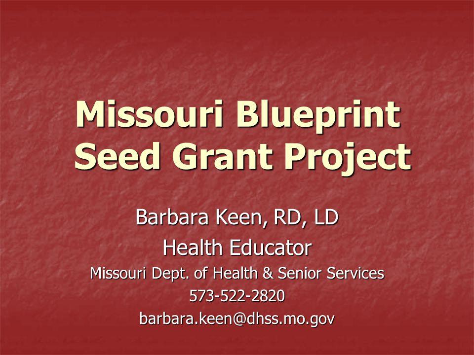 Missouri Blueprint Seed Grant Project Barbara Keen, RD, LD Health Educator Missouri Dept.