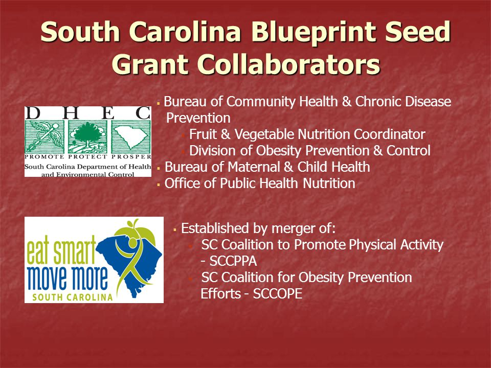 South Carolina Blueprint Seed Grant Collaborators  Bureau of Community Health & Chronic Disease Prevention  Fruit & Vegetable Nutrition Coordinator  Division of Obesity Prevention & Control  Bureau of Maternal & Child Health  Office of Public Health Nutrition  Established by merger of:  SC Coalition to Promote Physical Activity - SCCPPA  SC Coalition for Obesity Prevention Efforts - SCCOPE