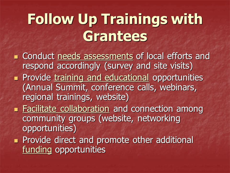 Follow Up Trainings with Grantees Conduct needs assessments of local efforts and respond accordingly (survey and site visits) Conduct needs assessments of local efforts and respond accordingly (survey and site visits) Provide training and educational opportunities (Annual Summit, conference calls, webinars, regional trainings, website) Provide training and educational opportunities (Annual Summit, conference calls, webinars, regional trainings, website) Facilitate collaboration and connection among community groups (website, networking opportunities) Facilitate collaboration and connection among community groups (website, networking opportunities) Provide direct and promote other additional funding opportunities Provide direct and promote other additional funding opportunities