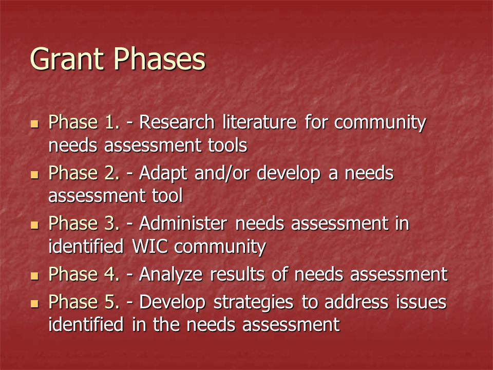 Grant Phases Phase 1. - Research literature for community needs assessment tools Phase 1.