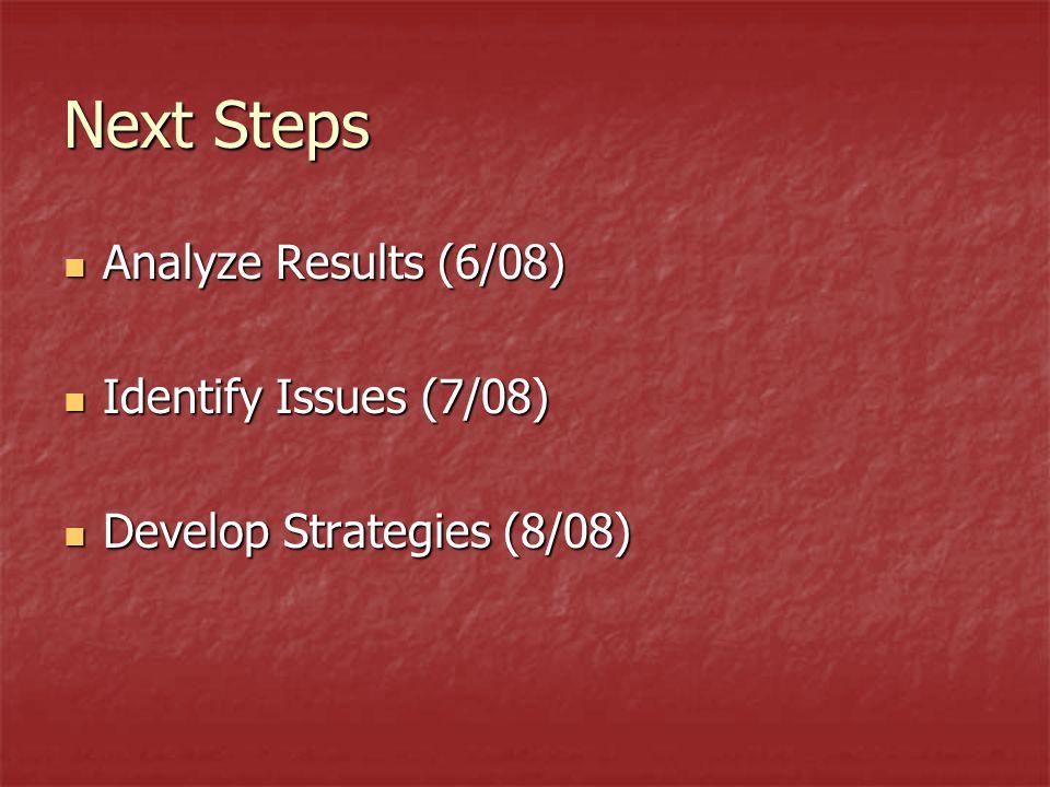 Next Steps Analyze Results (6/08) Analyze Results (6/08) Identify Issues (7/08) Identify Issues (7/08) Develop Strategies (8/08) Develop Strategies (8/08)