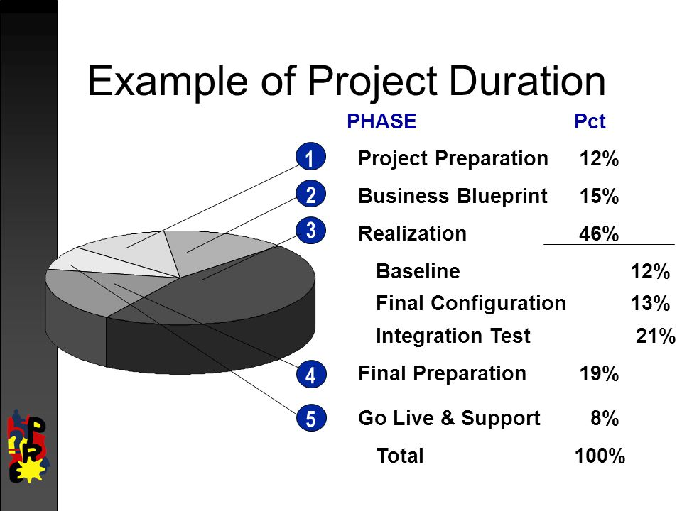Example of Project Duration PHASEPct Project Preparation12% Business Blueprint15% Realization46% Baseline12% Final Configuration13% Integration Test21