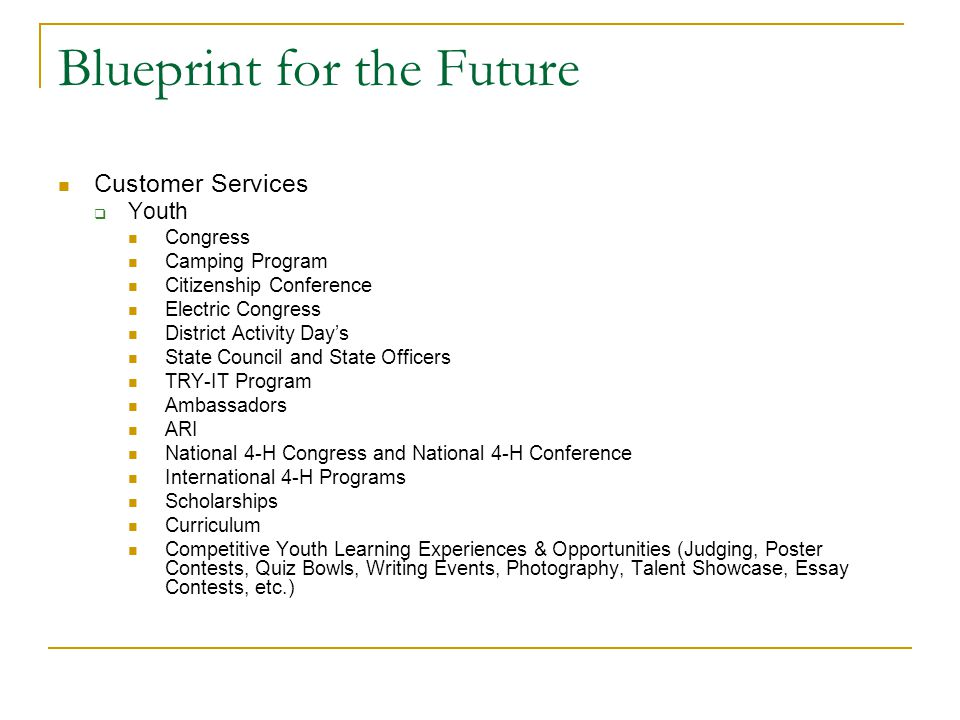 Blueprint for the Future Customer Services  Youth Congress Camping Program Citizenship Conference Electric Congress District Activity Day's State Cou
