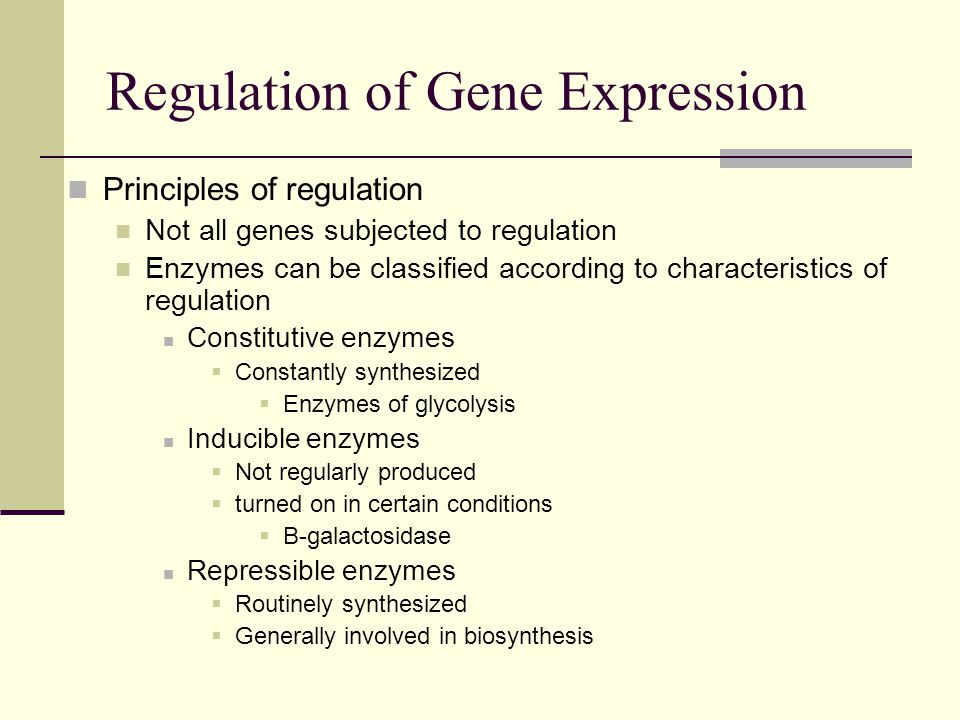 Principles of regulation Not all genes subjected to regulation Enzymes can be classified according to characteristics of regulation Constitutive enzymes  Constantly synthesized  Enzymes of glycolysis Inducible enzymes  Not regularly produced  turned on in certain conditions  Β-galactosidase Repressible enzymes  Routinely synthesized  Generally involved in biosynthesis Regulation of Gene Expression