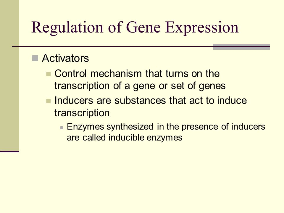 Regulation of Gene Expression Activators Control mechanism that turns on the transcription of a gene or set of genes Inducers are substances that act to induce transcription Enzymes synthesized in the presence of inducers are called inducible enzymes