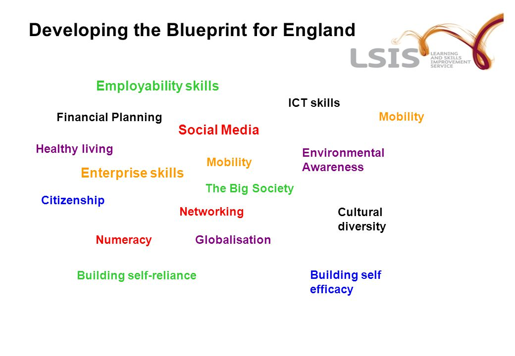 Developing the Blueprint for England ICT skills Healthy living Employability skills Numeracy Building self efficacy Social Media Citizenship Financial