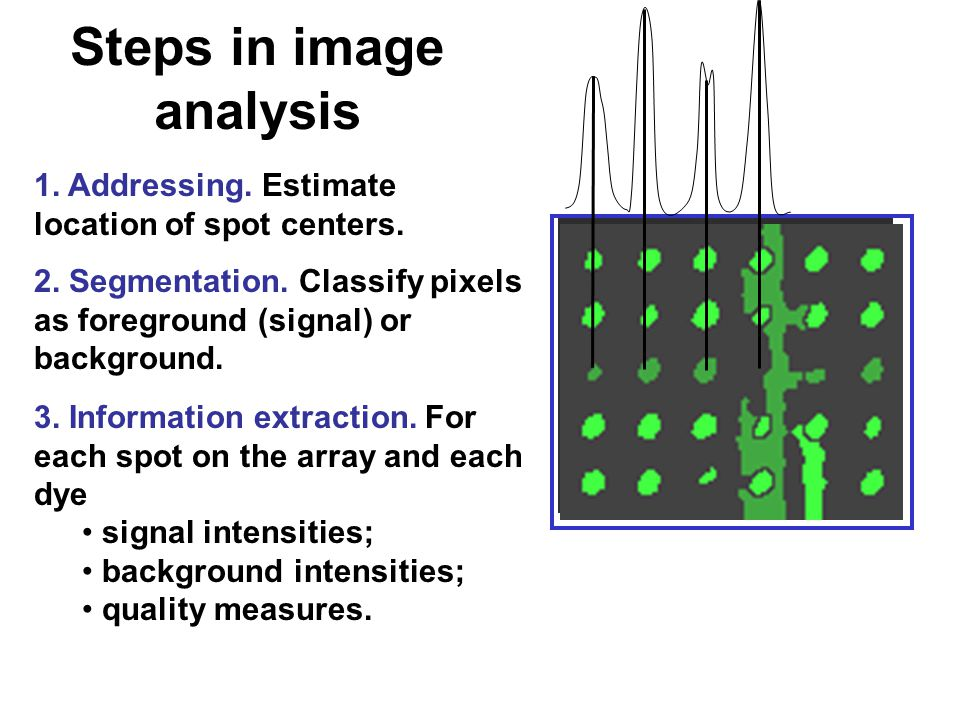 Steps in image analysis 1. Addressing. Estimate location of spot centers.