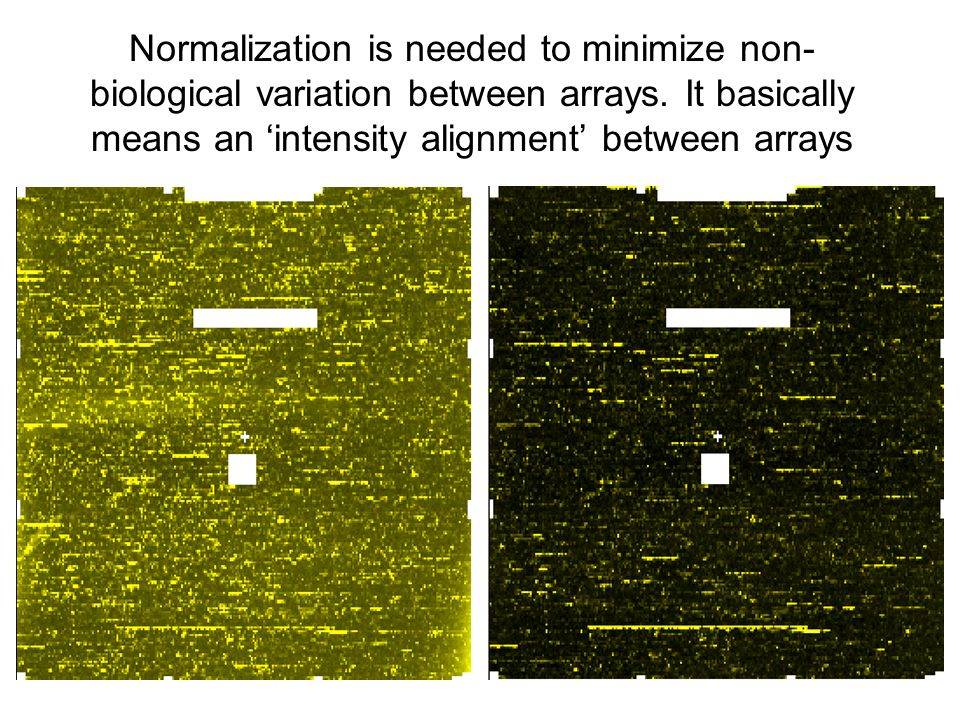 Normalization is needed to minimize non- biological variation between arrays.
