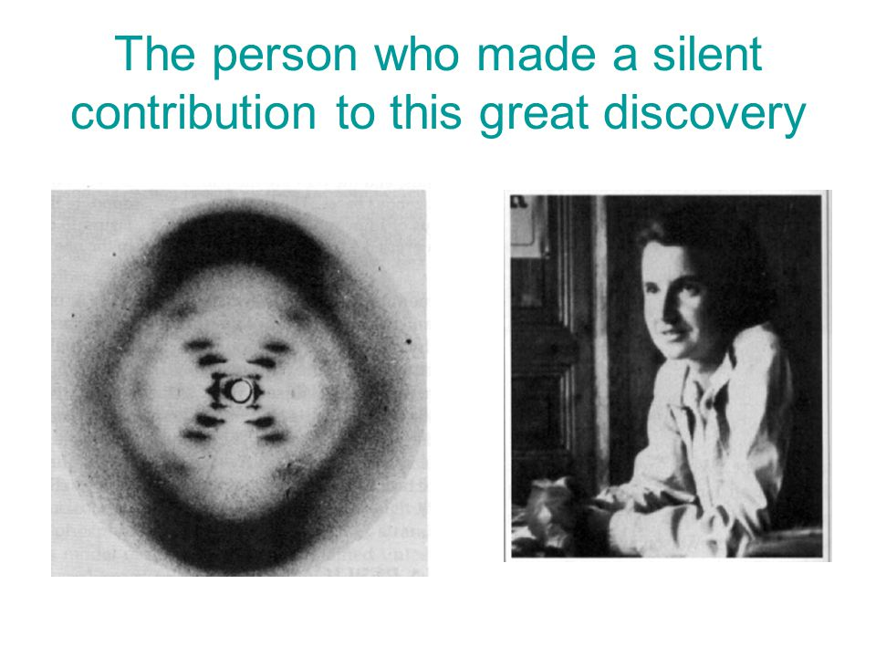 The person who made a silent contribution to this great discovery