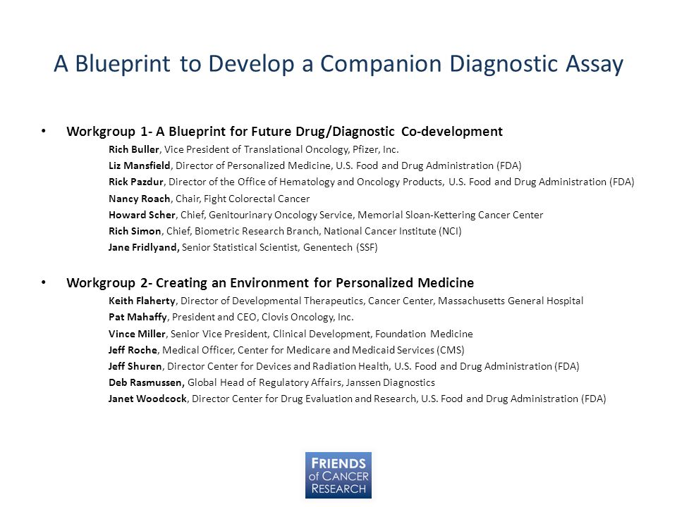 A Blueprint to Develop a Companion Diagnostic Assay Workgroup 1- A Blueprint for Future Drug/Diagnostic Co-development Rich Buller, Vice President of