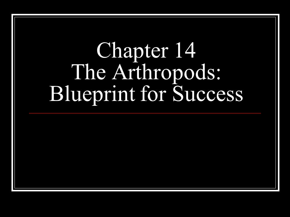 Chapter 14 The Arthropods: Blueprint for Success