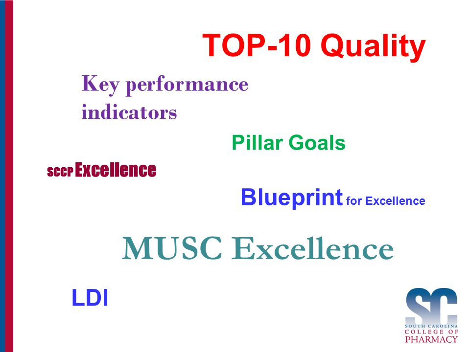 TOP-10 Quality Blueprint for Excellence SCCP Excellence Key performance indicators Pillar Goals MUSC Excellence LDI