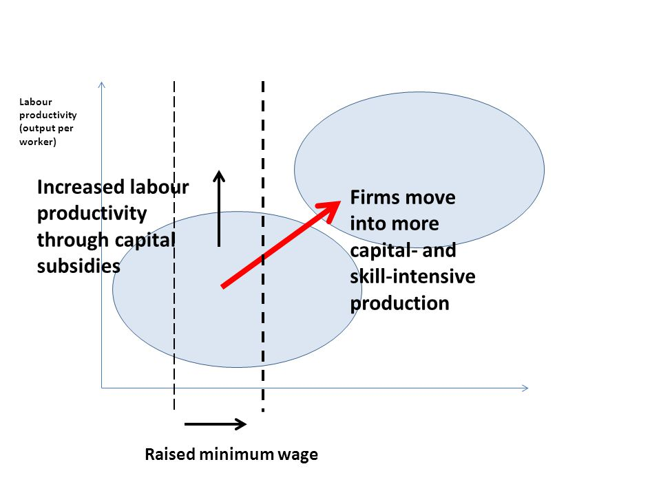 Labour productivity (output per worker) Raised minimum wage Firms move into more capital- and skill-intensive production Increased labour productivity through capital subsidies