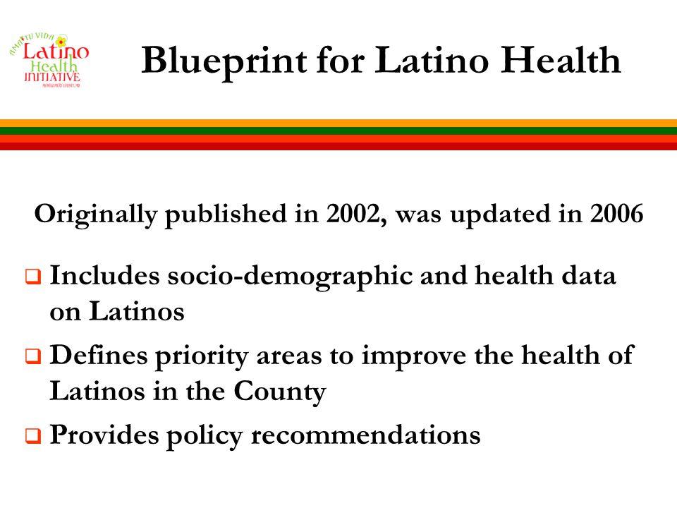 Blueprint Update: A Community-Based Participatory Process DEVELOPMENT OF 2008 - 2012 BLUEPRINT I.