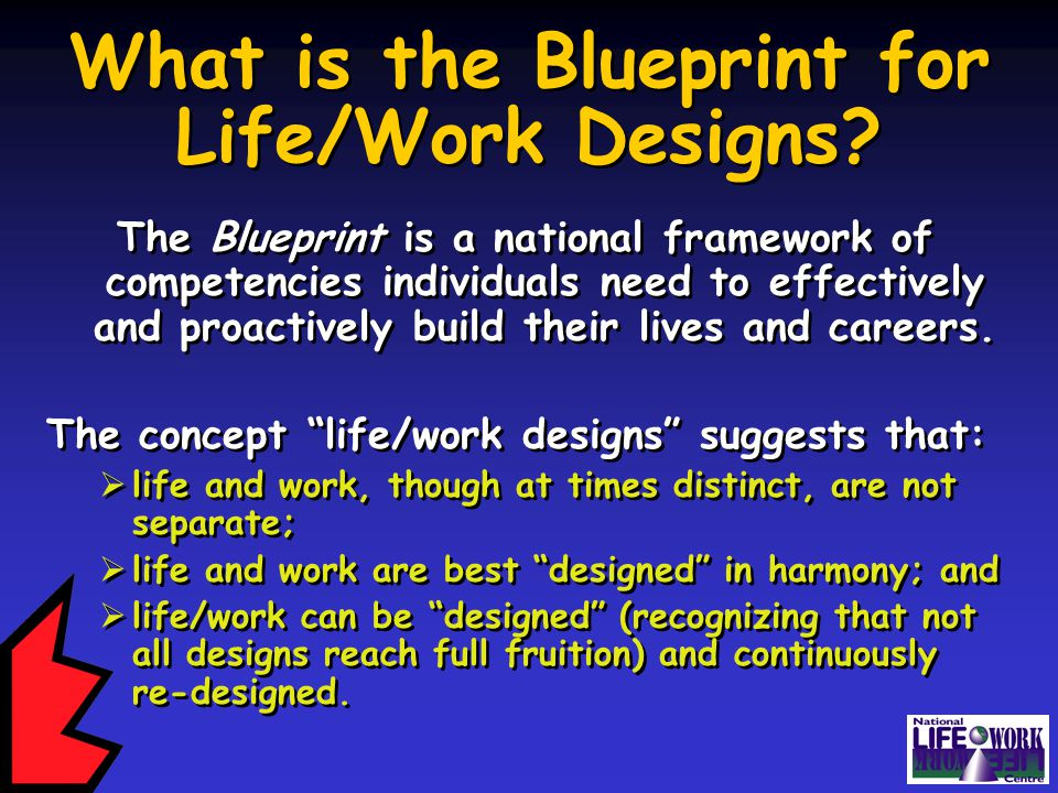 What is the Blueprint for Life/Work Designs.
