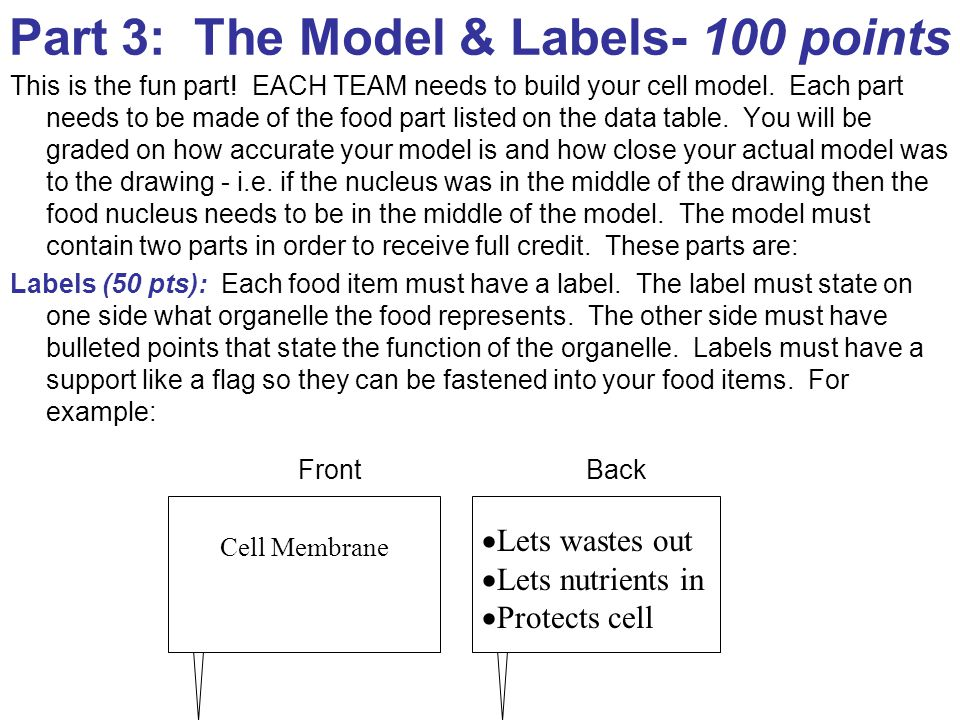 Part 3: The Model & Labels- 100 points This is the fun part.