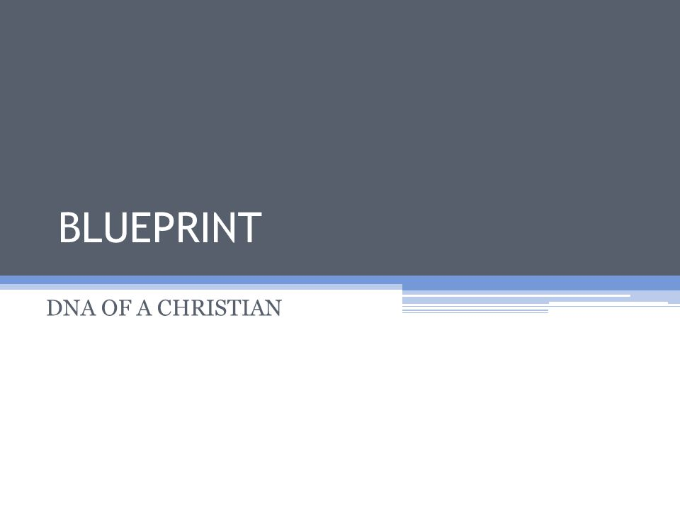 BLUEPRINT DNA OF A CHRISTIAN