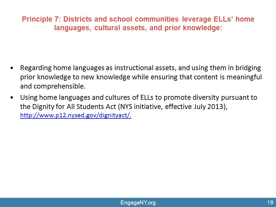 Regarding home languages as instructional assets, and using them in bridging prior knowledge to new knowledge while ensuring that content is meaningfu