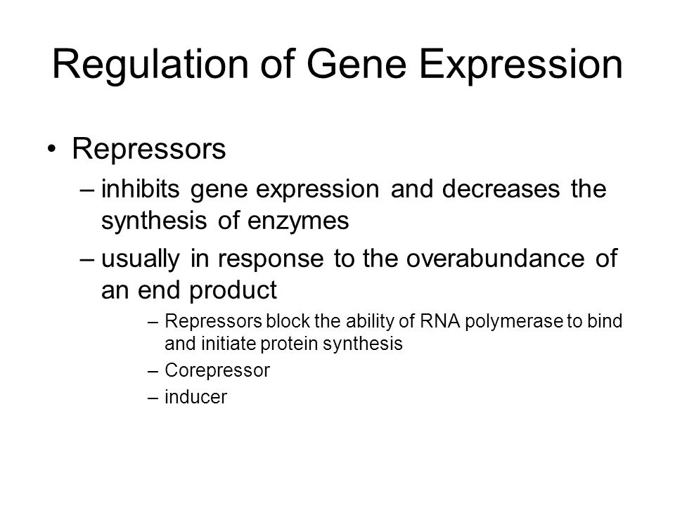 Repressors –inhibits gene expression and decreases the synthesis of enzymes –usually in response to the overabundance of an end product –Repressors bl