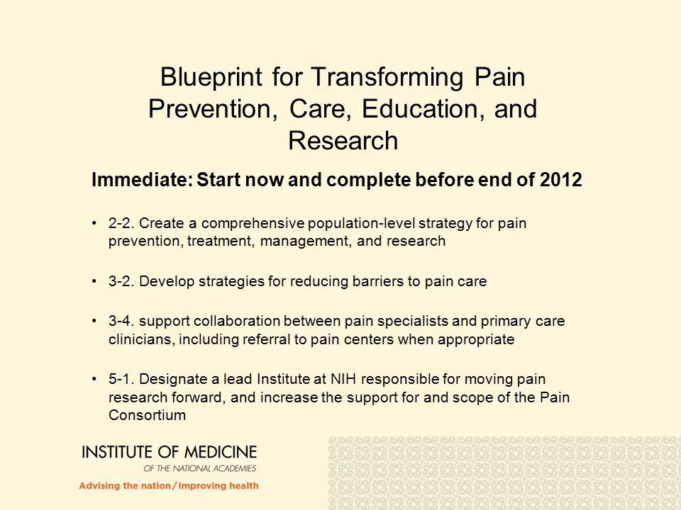 Blueprint for Transforming Pain Prevention, Care, Education, and Research Immediate: Start now and complete before end of 2012 2-2.