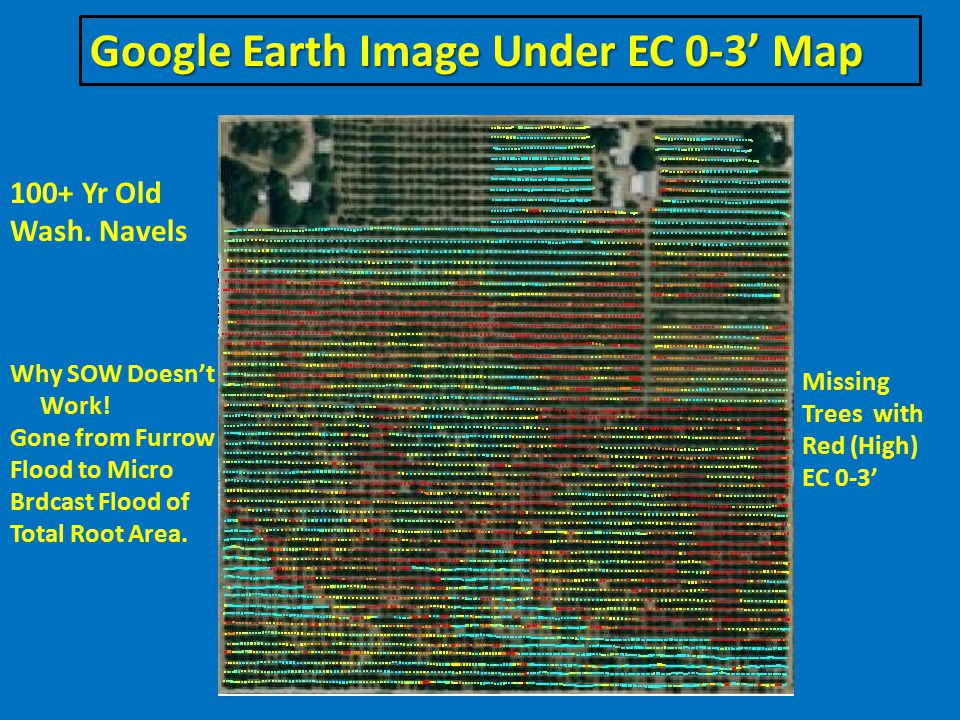 Google Earth Image Under EC 0-3' Map Missing Trees with Red (High) EC 0-3' 100+ Yr Old Wash.