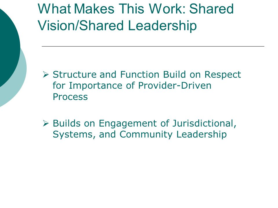 What Makes This Work: Shared Vision/Shared Leadership  Structure and Function Build on Respect for Importance of Provider-Driven Process  Builds on Engagement of Jurisdictional, Systems, and Community Leadership
