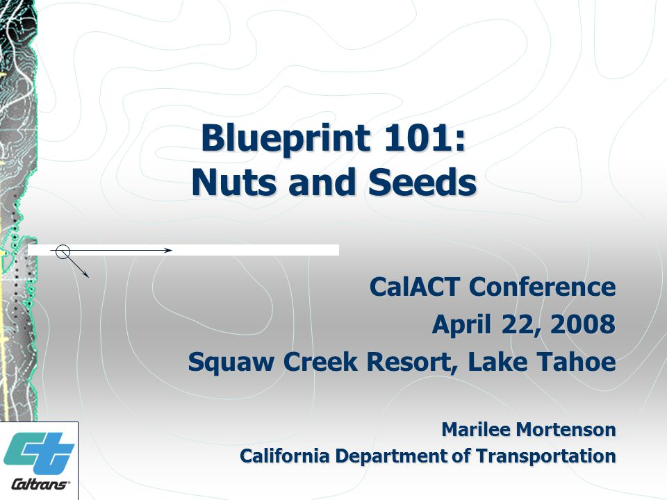 Blueprint 101: Nuts and Seeds CalACT Conference April 22, 2008 Squaw Creek Resort, Lake Tahoe Marilee Mortenson California Department of Transportation