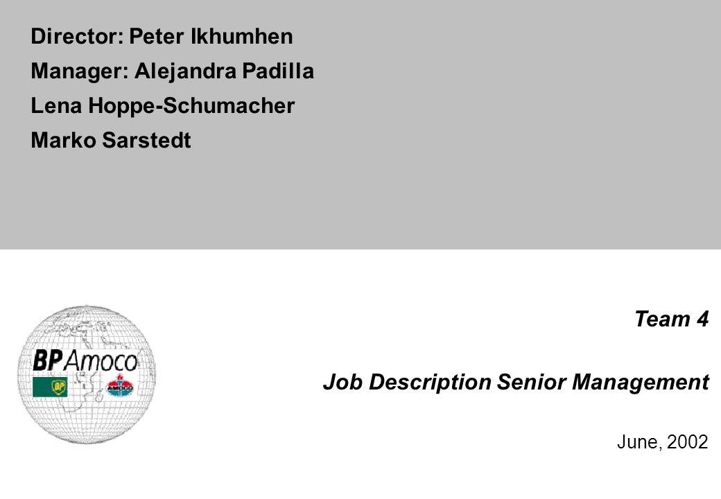 Team 4 Job Description Senior Management June, 2002 Director: Peter Ikhumhen Manager: Alejandra Padilla Lena Hoppe-Schumacher Marko Sarstedt